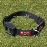 View Image 1 of Bark4Beer Bottle Opener Dog Collar