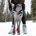 View Image 4 of Polar Trex Dog Boots by RuffWear - Red Rock