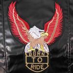 View Image 3 of Born To Ride Motorcycle Harness Jacket - Black