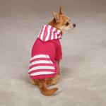View Image 1 of Brite Stripe Pullover Dog Hoodie - Raspberry