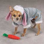 View Image 3 of Bunny Rabbit Costume for Dogs by Zack & Zoey