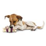 View Image 2 of Busy Buddy Bristle Bone Dental Toy