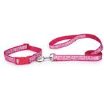View Image 2 of Butterfly Garden Dog Leash - Pink