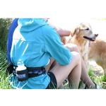 View Image 2 of Cardio Canine Hands Free Human Harness and Dog Leash