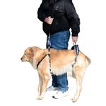 View Image 1 of CareLift Pet Lifting Harness - Full Body
