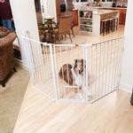 View Image 1 of Carlson Flexi Walk-Thru Dog Gate with Pet Door