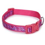 View Image 1 of Carolina Collection Dog Collar - Raspberry