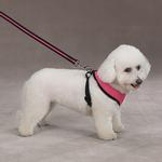 View Image 3 of Casual Canine Mesh Dog Harness - Pink