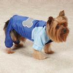 View Image 3 of Casual Canine Nylon Snow Dog Parka - Nautical Blue