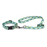 View Image 2 of Casual Canine Pooch Pattern Dog Leash - Blue Argyle