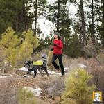 View Image 4 of Cloud Chaser Soft Shell Dog Jacket by RuffWear - Forest Green