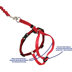 View Image 3 of Come with Me Kitty Harness & Bungee Leash - Dusty Rose & Burgundy