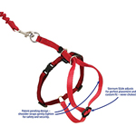 View Image 3 of Come with Me Kitty Harness & Bungee Leash - Red