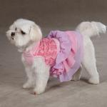 View Image 3 of Cotton Candy Dog Dress - Pink
