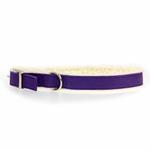 View Image 1 of Cozy Sherpa Dog Collar by East Side Collection - Ultra Violet