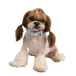 View Image 1 of Cozy Turtle Scarf Dog Collar by Pinkaholic - Blue