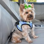 View Image 1 of Designer Choke-Free Step-In Dog Harness - Pacific Blue Plaid