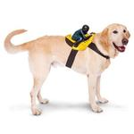 View Image 1 of Dog Riders Harness Halloween Costume - Biker