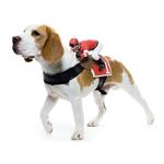 View Image 1 of Dog Riders Harness Halloween Costume - Jockey