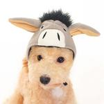 View Image 3 of Donkey Dog Hat by DOGO