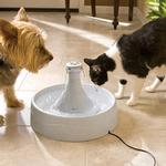View Image 4 of Drinkwell 360 Pet Fountain - Plastic