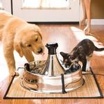 View Image 3 of Drinkwell 360 Pet Fountain - Stainless Steel