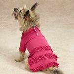 View Image 2 of Blooming Brights Polo Dog Dress - Raspberry