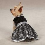View Image 1 of East Side Collection Glam Dog Dress