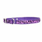 View Image 1 of Vibrant Leopard Dog Collar - Ultra Violet