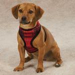 View Image 1 of Yuletide Tartan Dog Harness