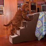 View Image 2 of Easy Step Pet Stairs - Chocolate