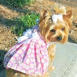 View Image 1 of Flower Garden Dog Dress - Pink Daisy