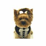 Formal Tuxedo Dog Bandana