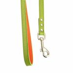 View Image 2 of FouFou Reversible Dog Leash - Green/Orange