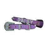 Foxy Glitz Dog Collar with Letter Strap - Lilac