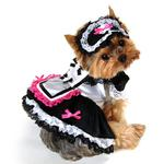 View Image 1 of French Maid Dog Costume by Anit