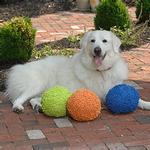 View Image 1 of GoDog Fuzzy Wuzzy Balls