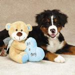 View Image 1 of Grriggles Bundle of Joy Bears Dog Toy - Blue Boy