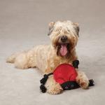 View Image 1 of Grriggles Burlies Tough Dog Toy - Ladybug