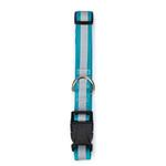 View Image 2 of Guardian Gear Brite Reflective Dog Collar - Bluebird