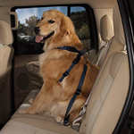 View Image 3 of Guardian Gear Dog Safety Car Harness - Black