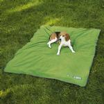 View Image 1 of Guardian Gear Insect Shield Dog Blanket
