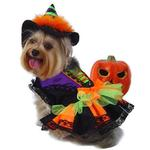 View Image 4 of Halloween Witch Dog Costume