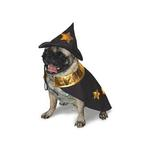 View Image 1 of Harry Pawter Dog Halloween Costume by Dogo