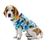 View Image 1 of Hawaiian Halloween Dog Costume by Paper Magic