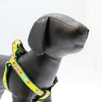 View Image 1 of Heart and Bone Dog Harness by Up Country