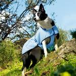 View Image 2 of Hurtta Cooling Dog Coat - Blue