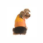 View Image 1 of It's Not Me, It's You Dog T-Shirt - Orange