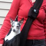 View Image 2 of Just Hangin' Messenger Style Sling Pet Carrier - Black
