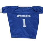 View Image 1 of Kentucky Wildcats Dog Jersey - Blue